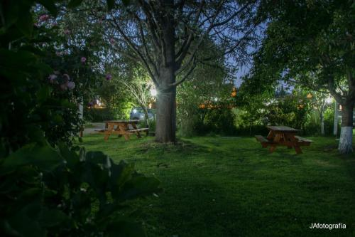 A garden outside La Posada de Olaf