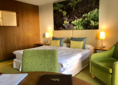 Cama o camas de una habitación en Hotel Tigaiga