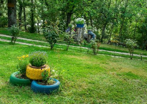 A garden outside Cabañas de Madera Sanabria