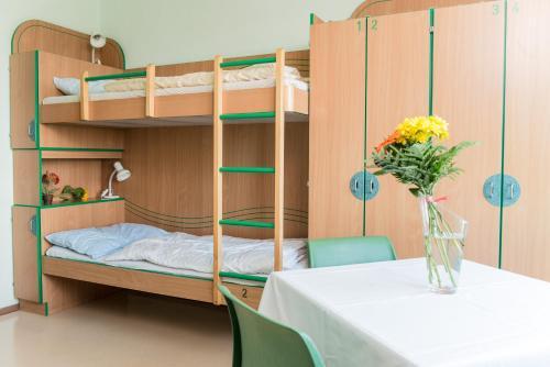 Palanda nebo palandy na pokoji v ubytování Hostel Hütteldorf