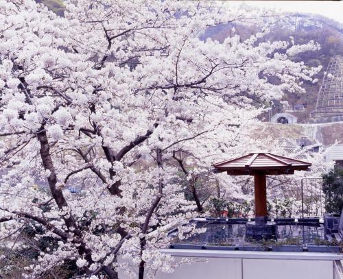 Hotel Kurobe during the winter
