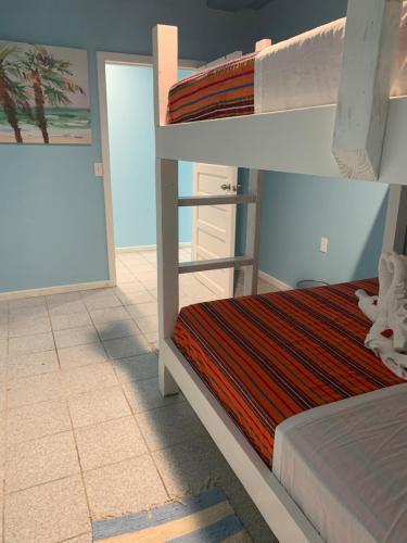 A bunk bed or bunk beds in a room at Sandbar Beachfront Hostel & Restaurant