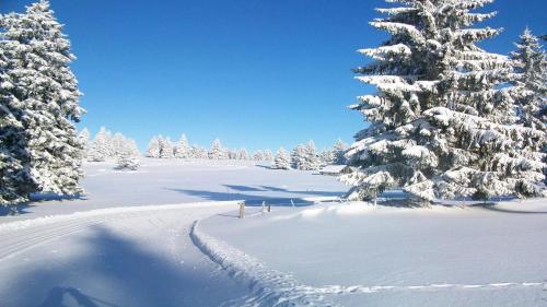L'établissement La Fée Verte en hiver