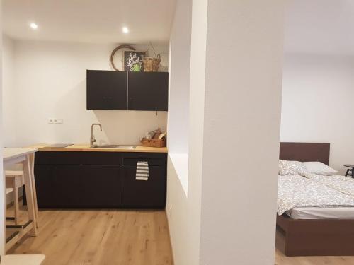 Televízia a/alebo spoločenská miestnosť v ubytovaní Apartment Dubnica Prejta