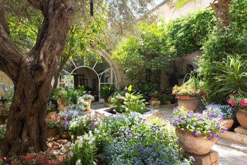 A garden outside The American Colony Hotel - Small Luxury Hotels of the World