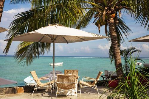 شاطئ عند بيت الضيافة أو بالجوار