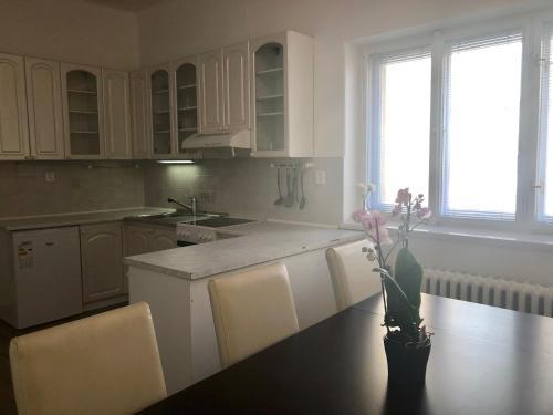 Küche/Küchenzeile in der Unterkunft CE Apartment Prague Central