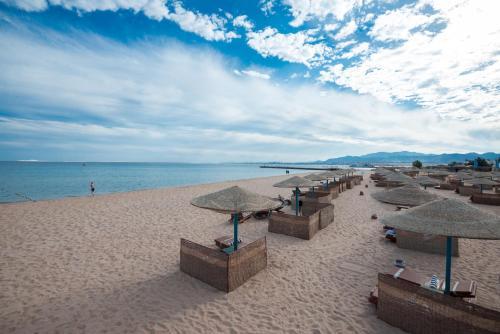 شاطئ عند المنتجعات أو بالجوار