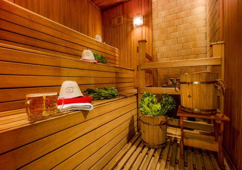 Spa and/or other wellness facilities at Hotel Olesya