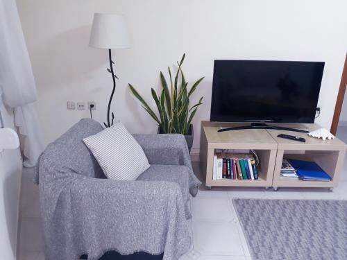 A television and/or entertainment centre at Old town apartment