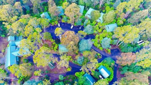 A bird's-eye view of Lemonthyme Wilderness Retreat