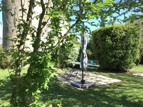 A garden outside Le Moulin de Margaux