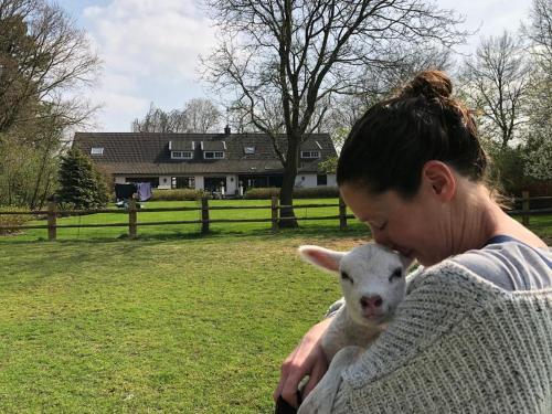 Pet or pets staying with guests at Het geheim van Merselo