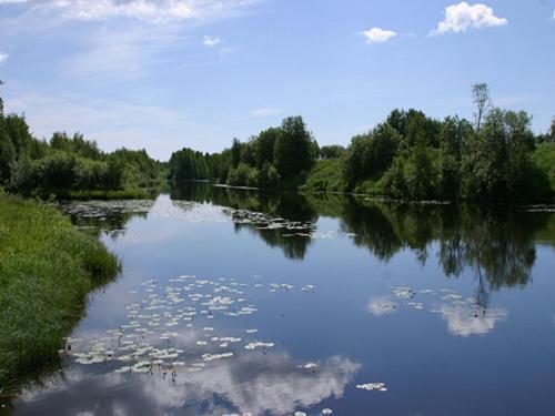 Utsikt över en sjö i närheten av motellet