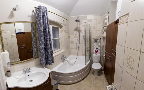 A bathroom at Czarna Owca- Pokoje Gościnne