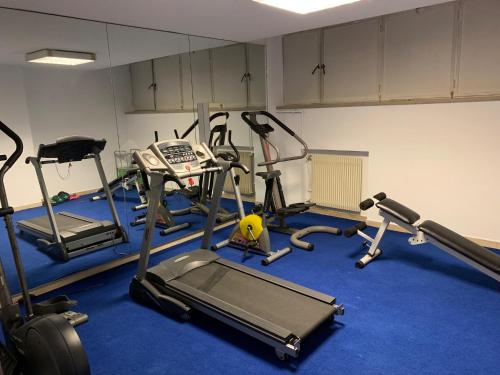 The fitness center and/or fitness facilities at Hotel Minerva