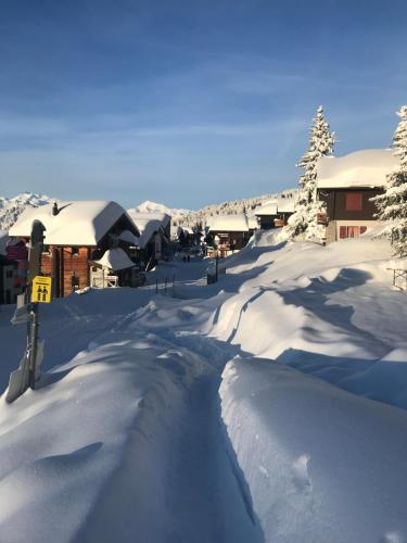 Hotel Alpfrieden during the winter