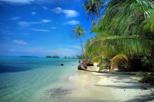 Pláž u rezortu