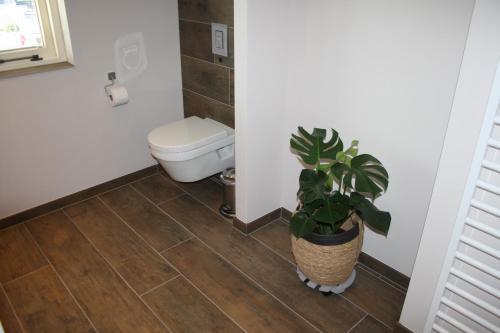 A bathroom at Hiltop
