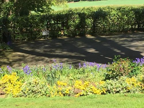 A garden outside Crossways Self-Catering Cottage - Self Contained