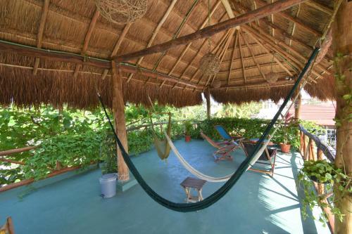 Vue sur la piscine de l'établissement Casa Almendro ou sur une piscine à proximité