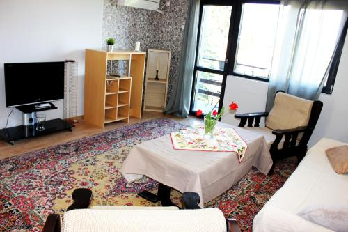 A television and/or entertainment center at Bankya Guest House - Sofia