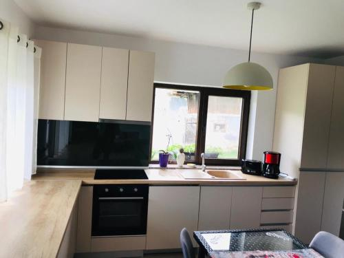 A kitchen or kitchenette at Agro-Pensiunea Morarita