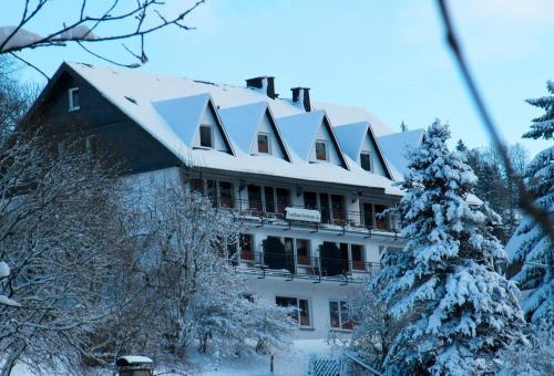 Hotel Landhaus Nordenau during the winter