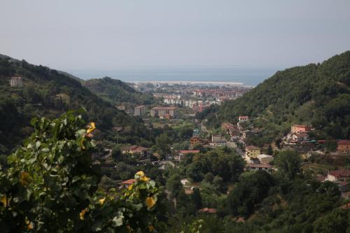 A bird's-eye view of La Castellana