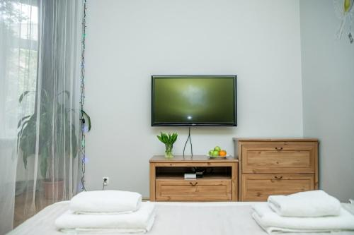 A television and/or entertainment center at Red Kurka Apartments