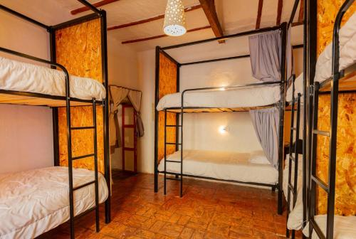 A bunk bed or bunk beds in a room at Botanico Hostel
