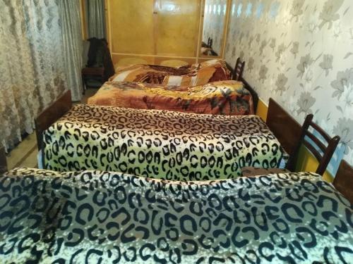 Cama ou camas em um quarto em ecotourism