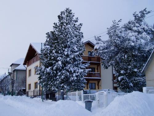 Guest House Boba during the winter