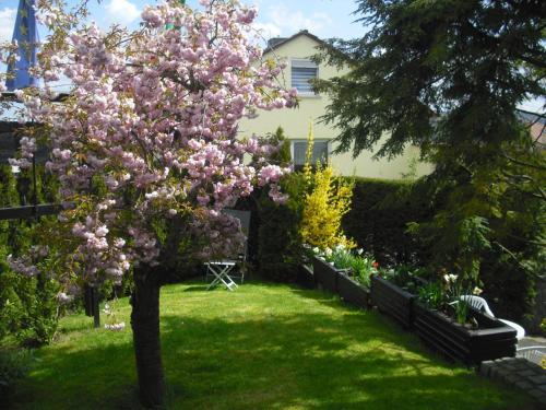 A garden outside Gästehaus Cramer
