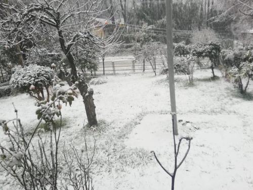 Cabaña Los Lleuques during the winter