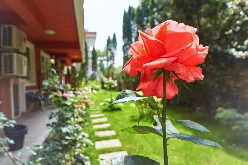 Vonkajšia záhrada v ubytovaní Leonardo Hotel