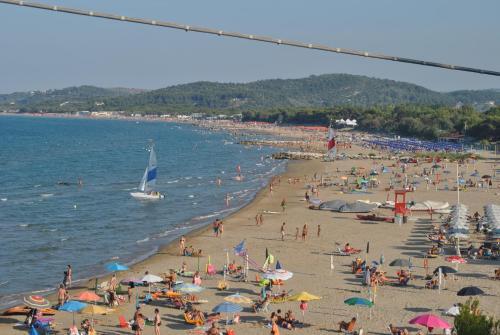 Spiaggia vicina o nei dintorni dell'agriturismo