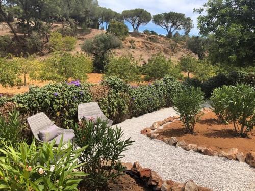 A garden outside Casa Sereno