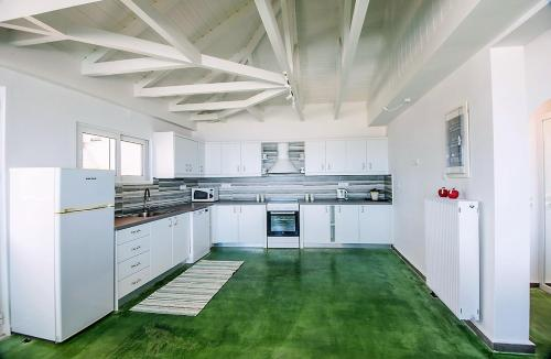 A kitchen or kitchenette at Villa Dafni