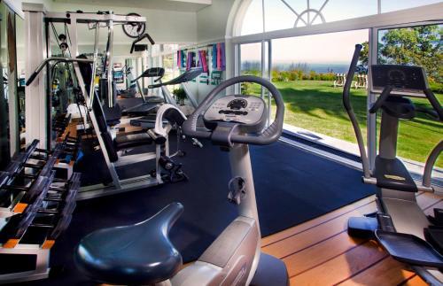 Het fitnesscentrum en/of fitnessfaciliteiten van Ellerman House