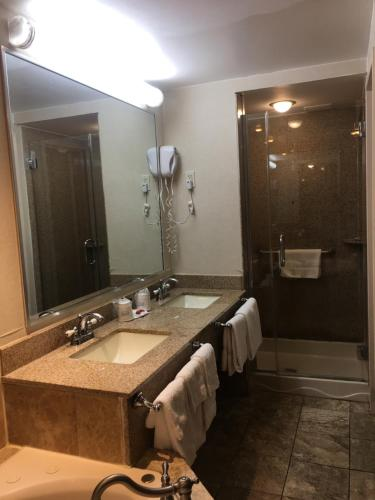 A bathroom at Ramada by Wyndham Rockville Centre
