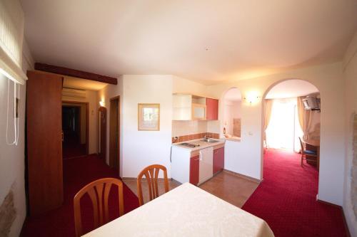 A kitchen or kitchenette at Hotel Villa Barbat