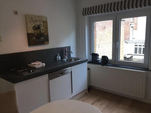 Kuchyň nebo kuchyňský kout v ubytování Beau City Apartment Maastricht