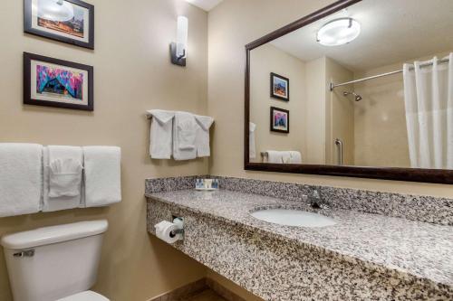 A bathroom at Comfort Suites Speedway - Kansas City