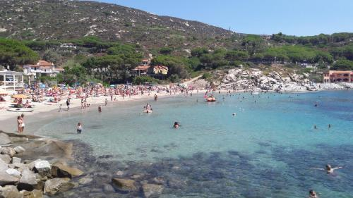 A beach at or near the hotel