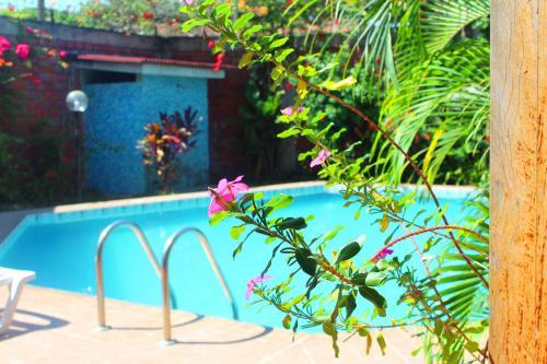 The swimming pool at or close to Posada Cumpanama