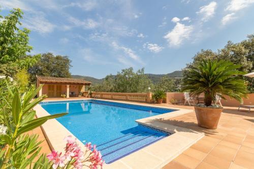 Esporles Mallorca - 293698