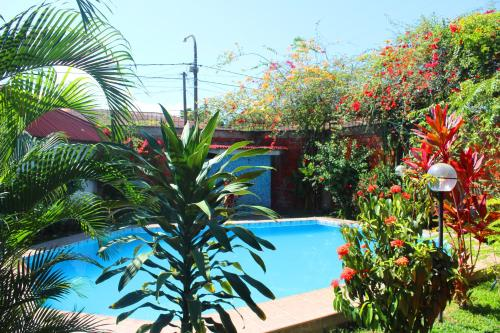 A view of the pool at Posada Cumpanama or nearby