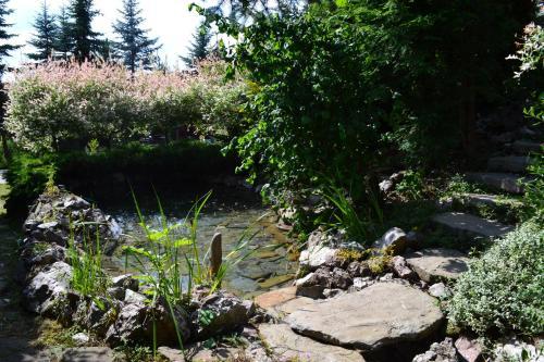 Ogród w obiekcie Willa Podhale