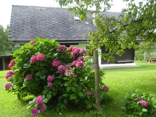 Ein Garten an der Unterkunft Ferienhaus Koglegg